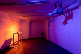 Изглед от изложбения проект на Трифон Ташев, представен в Coffee&Gallery Cu29, снимка Лина Кривошиева