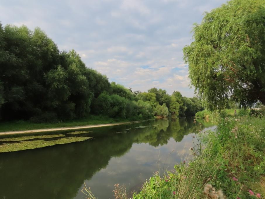 Река на биоразнообразието